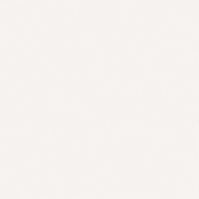 ポリエステル化粧合板 カラーフィットポリ RK-6013 4x8 表面エンボス(梨地)仕上