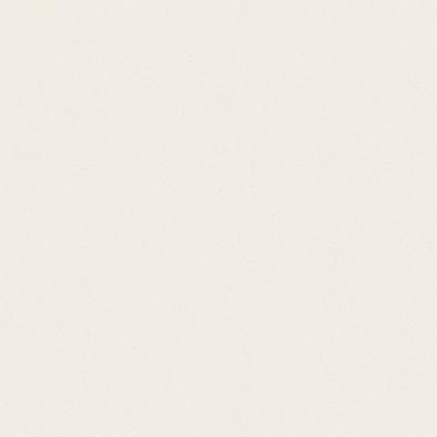 ポリエステル化粧合板 カラーフィットポリ RK-6016 4x8 表面エンボス(梨地)仕上