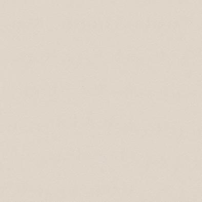 ポリエステル化粧合板 カラーフィットポリ RK-6017 4x8 表面エンボス(梨地)仕上