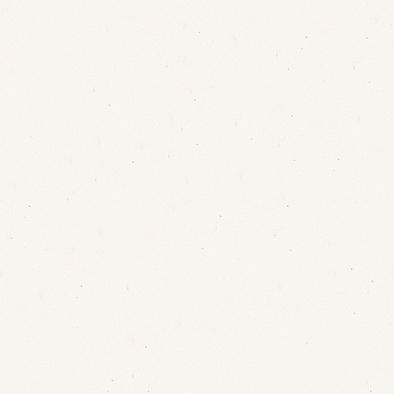ポリエステル化粧合板 カラーフィットポリ RK-6100 4x8 表面エンボス(梨地)仕上