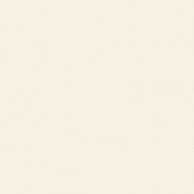 ポリエステル化粧合板 カラーフィットポリ RK-6101 4x8 表面エンボス(梨地)仕上