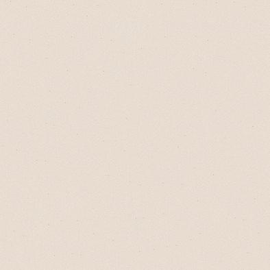 ポリエステル化粧合板 カラーフィットポリ RK-6105 4x8 表面エンボス(梨地)仕上