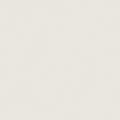 ポリエステル化粧合板 カラーフィットポリ RK-6109 4x8 表面エンボス(梨地)仕上
