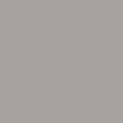 ポリエステル化粧合板 カラーフィットポリ RK-6116 4x8 表面エンボス(梨地)仕上