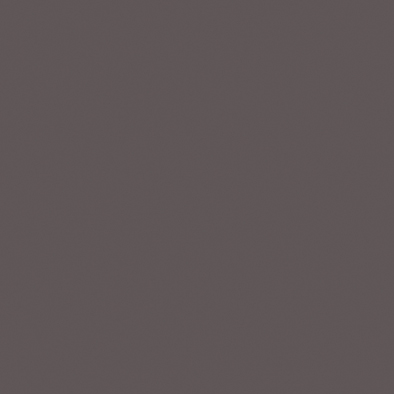 ポリエステル化粧合板 カラーフィットポリ RK-6118 4x8 表面エンボス(梨地)仕上
