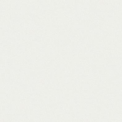 ポリエステル化粧合板 カラーフィットポリ RK-6300 4x8 表面エンボス(梨地)仕上