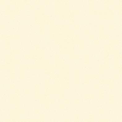 ポリエステル化粧合板 カラーフィットポリ RK-6508 4x8 表面エンボス(梨地)仕上