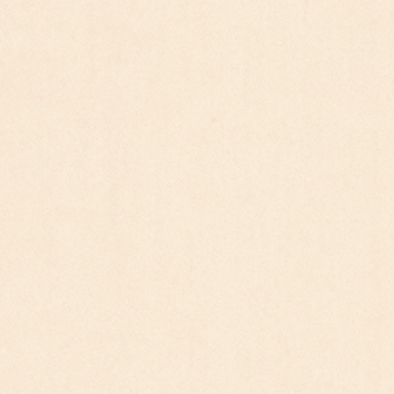 メラミン化粧板 木目(クリア&ライトトーン) TJY421K 4x8 メープル 柾目