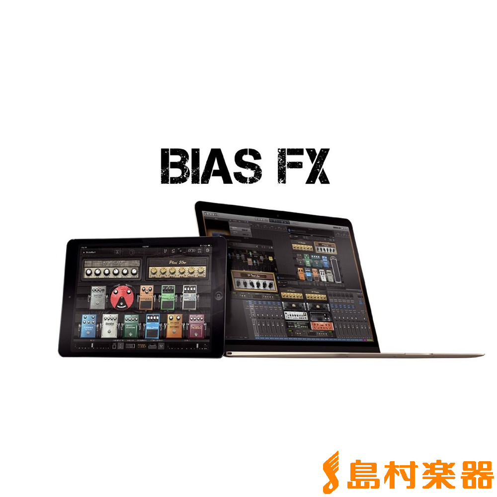 Positive Grid BIAS FX Professional ギターエフェクト 【ポジティブグリッド】【国内正規品】【ダウンロード版】