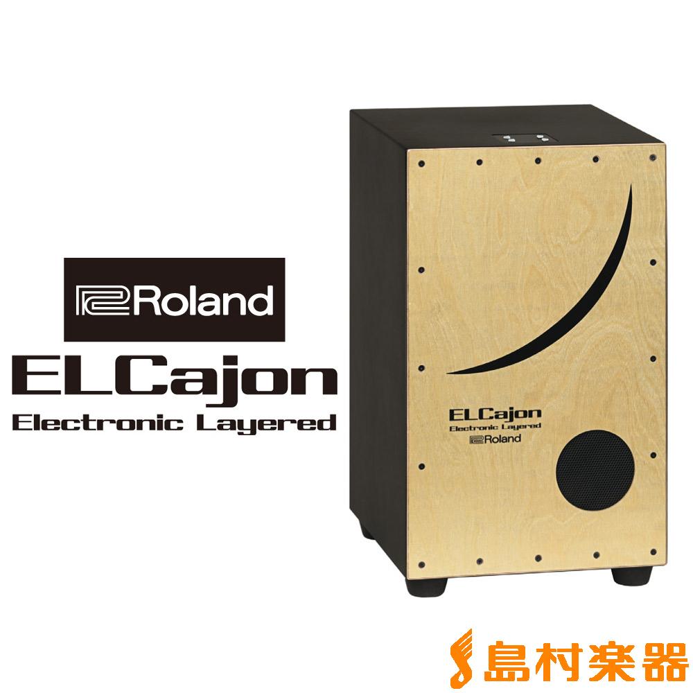 Roland Electronic Layered Cajon EC-10 エレクトロニック レイヤード カホン 【ローランド】