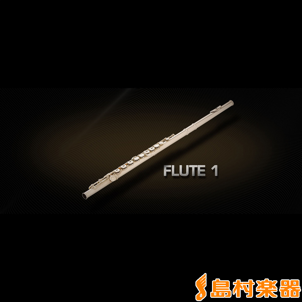 VIENNA FLUTE 1 フルート音源 プラグインソフト 【ビエナ】【国内正規品】【ダウンロード版】