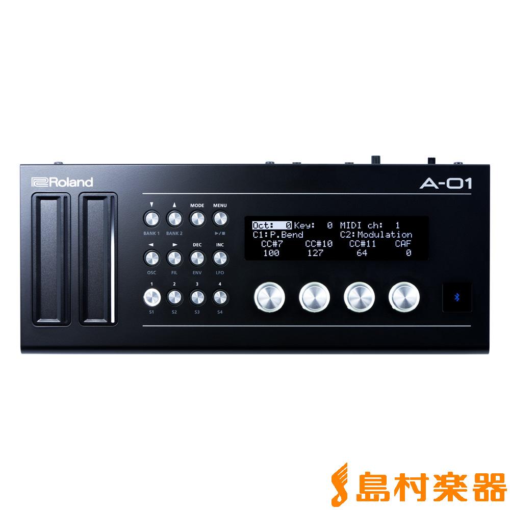 値頃 Roland【ローランド】 Boutique A-01 Roland Controller Generator Generator MIDIコントローラー【ローランド】, ブランドデポ TOKYO:4745c8cf --- canoncity.azurewebsites.net