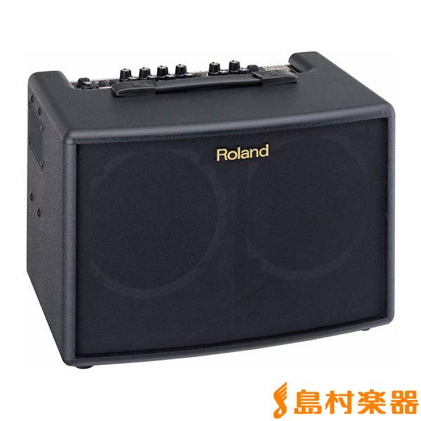 Roland AC60 ギターアンプ アコースティックギター用 【ローランド】