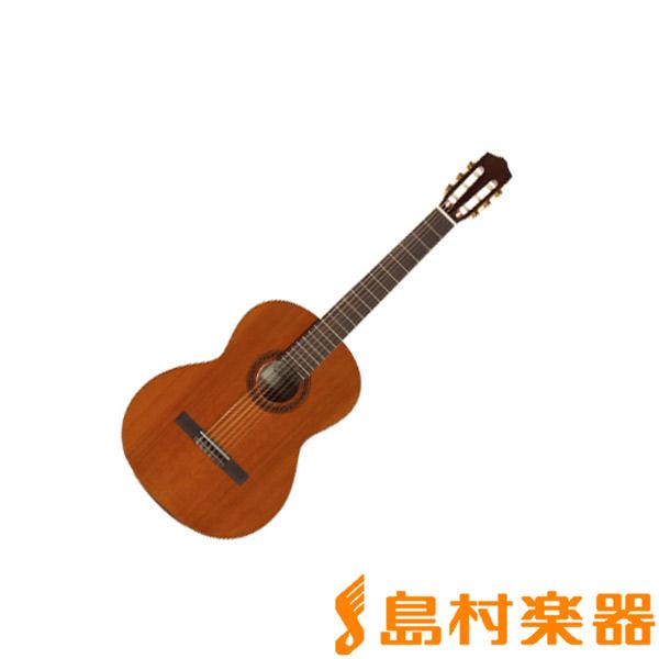 Cordoba C5 アコースティックギター 【コルドバ】