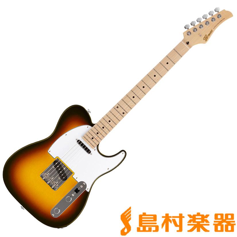 Greco WST-STD MAPLE SB エレキギター 【グレコ】