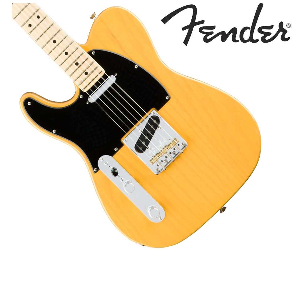 Fender American Professional Telecaster Left-Hand Butterscotch Blonde テレキャスター エレキギター 左利き レフトハンド 【フェンダー】