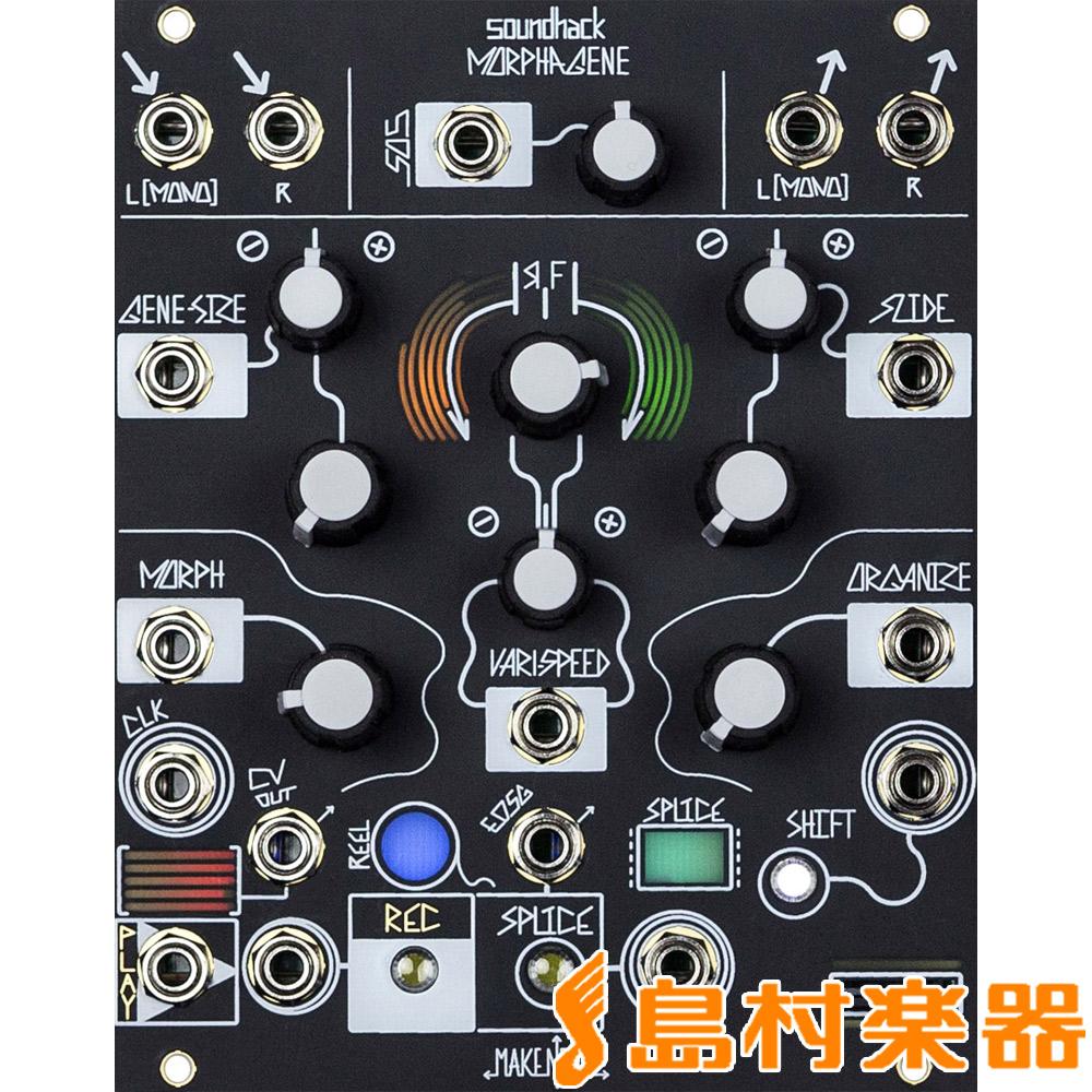 Make Noise Morphagene モジュラーシンセサイザー 【メイクノイズ】