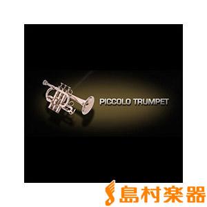 VIENNA PICCOLO TRUMPET/S 【ビエナ VISI29S】【国内正規品】