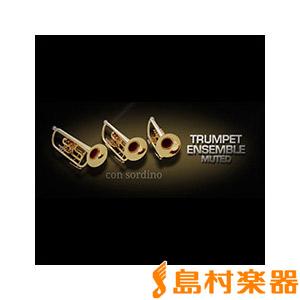 VIENNA TRUMPET ENSEMBLE MUTED/S  トランペットアンサンブルミュート 【ビエナ VISI35S】【国内正規品】