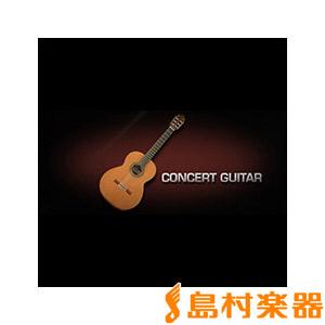 VIENNA CONCERT GUITAR/S コンサートギター【ビエナ【ダウンロード版 GUITAR/S】【ビエナ CONCERT VISI78S】【国内正規品】, 佐多町:c7fd83d1 --- sunward.msk.ru
