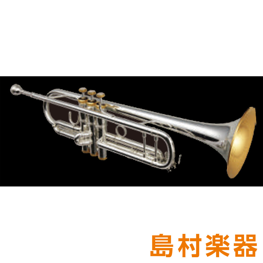 Bach TR400K トランペット B♭ 金メッキ 【バック】