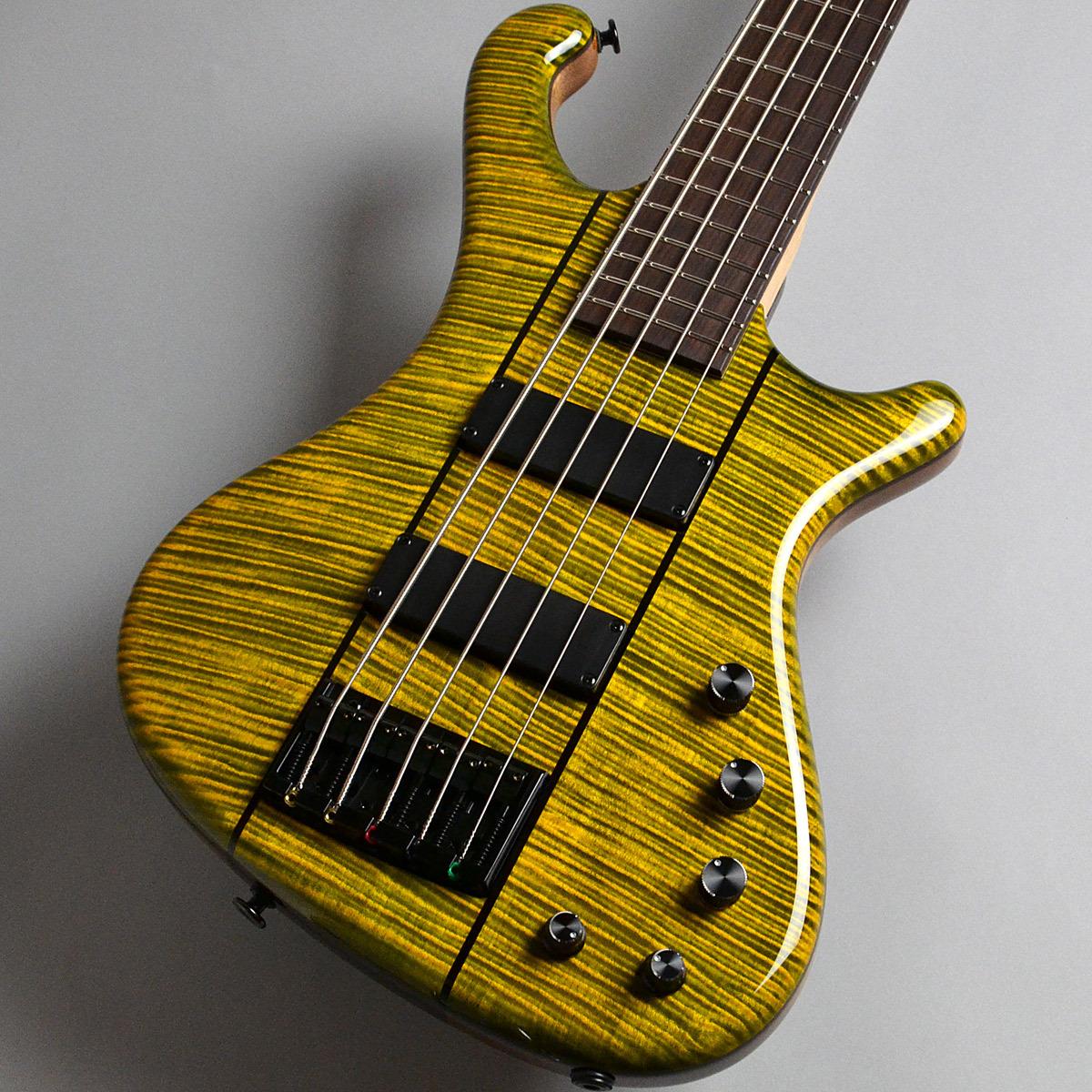 Freedom Custom Guitar Research Dulake 5st / 砂漠 アクティブ5弦ベース 【フリーダム】【新宿PePe店】