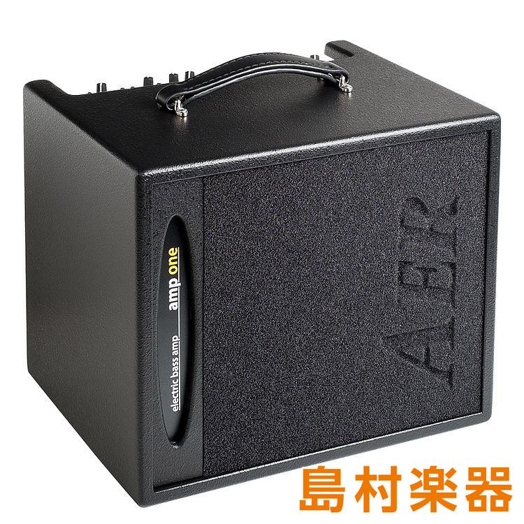 AER Amp-one ベース用コンボアンプ