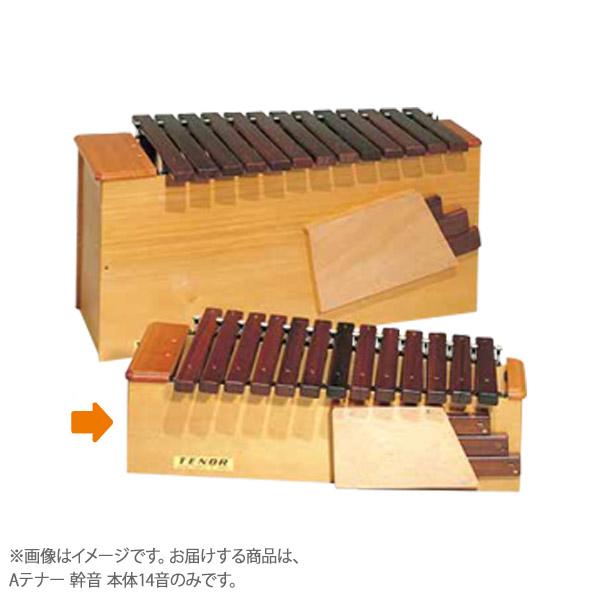 コオロギ シロボックス Aテナー 幹音 本体14音