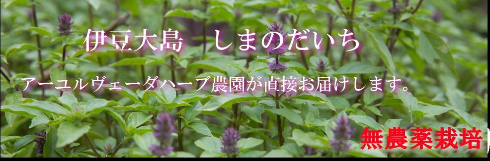 しまのだいち:伊豆大島の薬草専門農園です。
