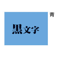 【キングジム】 テプラPROテープカートリッジ (パステル) 青に黒文字24mm幅×8m SC24B 入数:1 ★お得な10個パック★