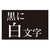 【カシオ計算機】 ネームランド テープカートリッジ 白文字テープ 黒に白文字18mm幅 XR-18ABK 入数:1 ★お得な10個パック★