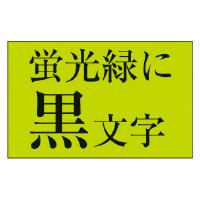 【カシオ計算機】 ネームランド テープカートリッジ 蛍光色テープ 緑に黒文字18mm幅 XR-18FGN 入数:1 ★お得な10個パック★