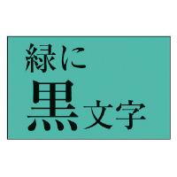 【カシオ計算機】 ネームランド テープカートリッジ スタンダードテープ 緑に黒文字18mm幅 XR-18GN 入数:1 ★お得な10個パック★