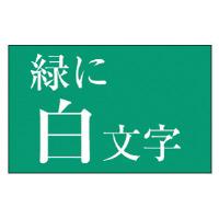 【カシオ計算機】 ネームランド テープカートリッジ 白文字テープ 緑に白文字 24mm幅 XR-24AGN 入数:1 ★お得な10個パック★