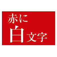 【カシオ計算機】 ネームランド テープカートリッジ 白文字テープ 赤に白文字 24mm幅 XR-24ARD 入数:1 ★お得な10個パック★