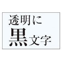 【カシオ計算機】 ネームランド テープカートリッジ 透明テープ 透明に黒文字24mm幅 XR-24X 入数:1 ★お得な10個パック★