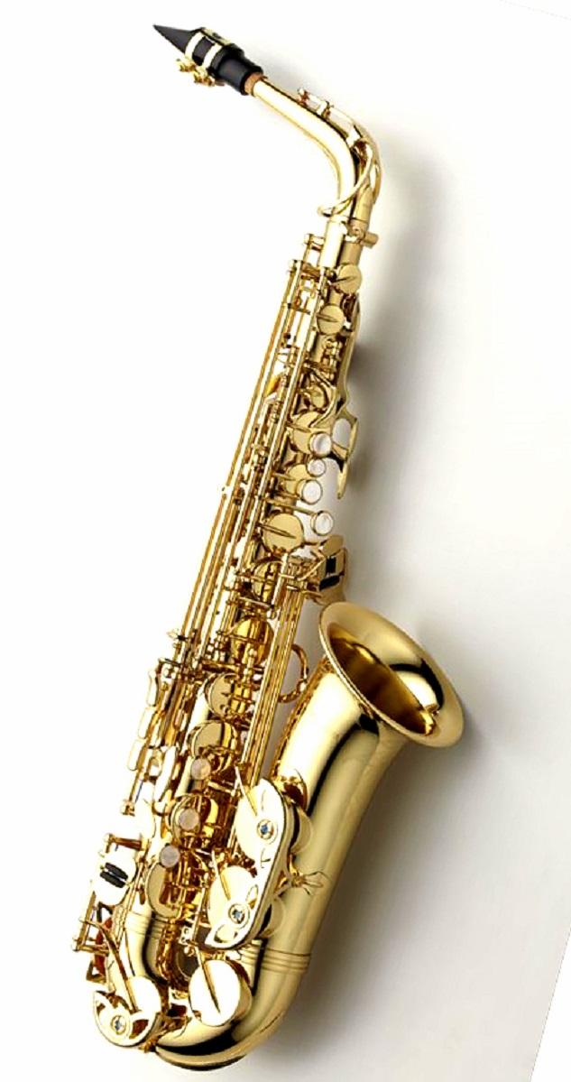 【予約受付中】Alto SaxophoneYANAGISAWA A-WO1