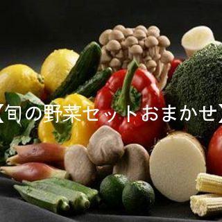 【主婦の味方ポッキリ企画】季節の野菜セット【おまかせ厳選約5K入りの5品以上】⇒