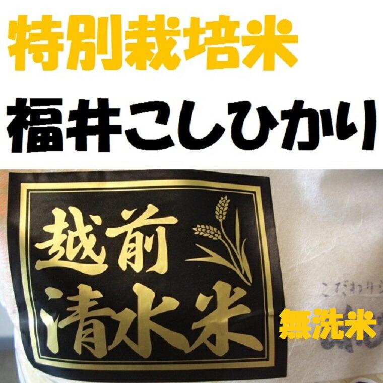 【特別栽培米】越前こしひかり【清水米】【無洗米】 30K袋【送料無料】【MB-KP】【0801gourmet】【smtb-T】