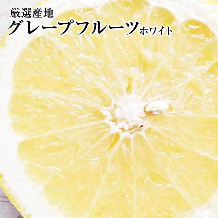 グレープフルーツ 【ホワイト】 タップリ40個入り1ケース 健康·ダイエット·美容·母の日