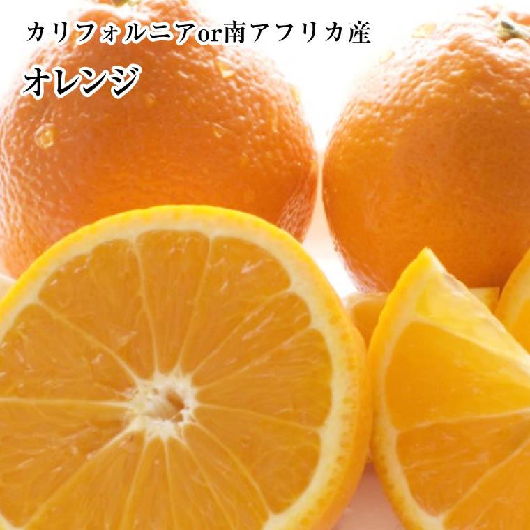 カルフォルニアor南アフリカ生まれ オレンジ お徳用72玉~88玉入り1ケ-ス ストアー 格安SALEスタート