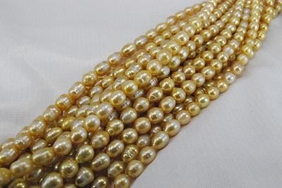 白蝶 真珠 ゴールド 9-11mm ネックレス        532P15May16              ポイント5倍