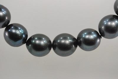 黒蝶 真珠  12-14mm  ネックレス  セミラウンド    532P15May16          ポイント5倍