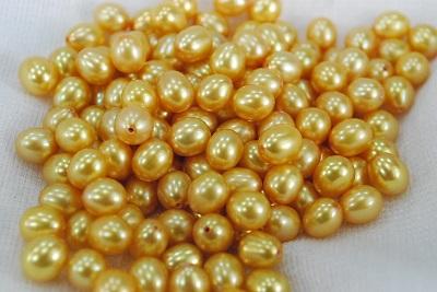 淡水真珠のペアです ホワイト オレンジ パープル 商品追加値下げ在庫復活 ゴールドの4色より選択できます 新商品!新型 6mmのオレンジ 6.5mmホワイト グレーが再入荷しました 真珠 6mm 材料 片孔ペア ルース ライス 6.5mm 淡水
