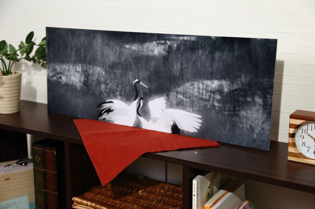 丹頂鶴「比翼の鳥(One wing)」