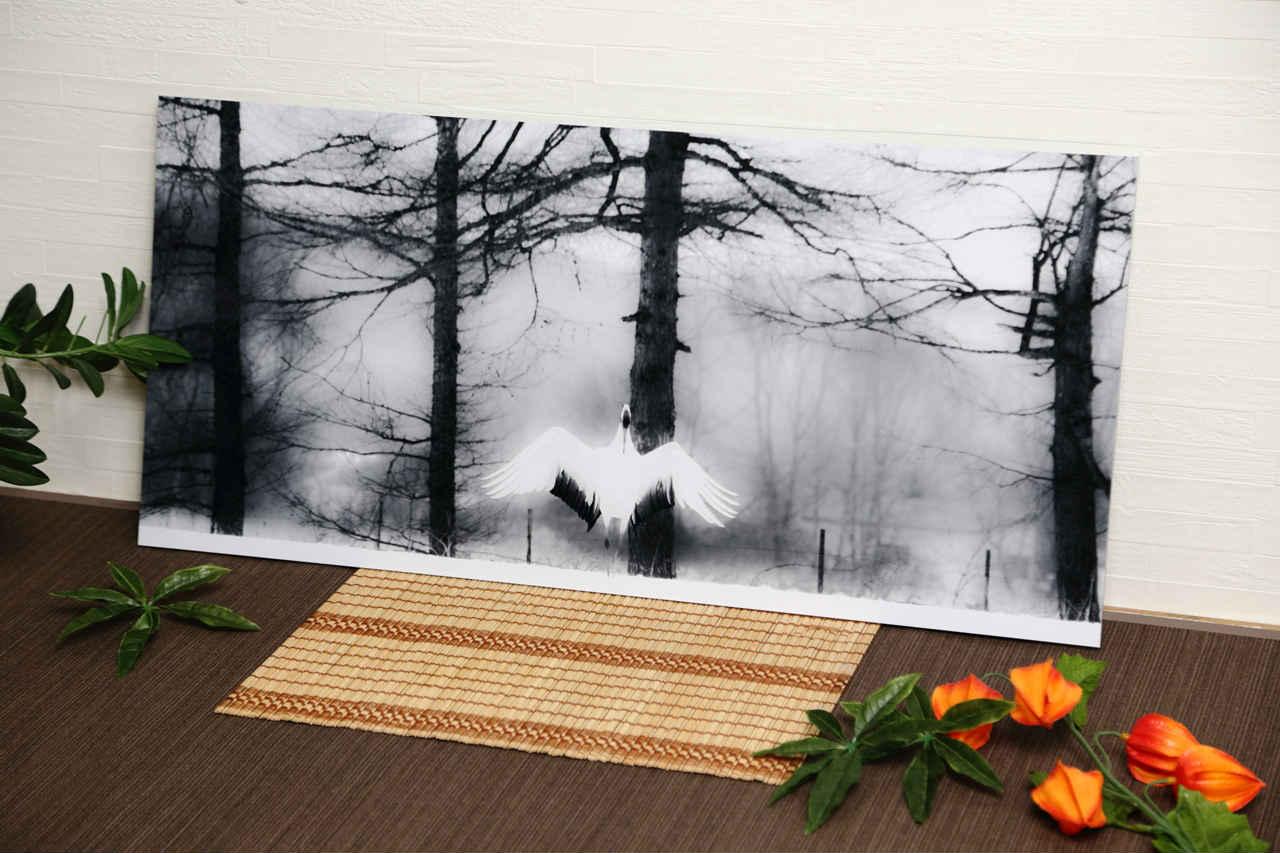 送料無料 和モダン 贈り物インテリアアートパネル フォト 日本 美 大自然 愛 癒やし 丹頂鶴「祈り(prayer)」Interior Art panel Photo Japan beauty Nature love healing (カーテン・壁紙・カップ応相談)