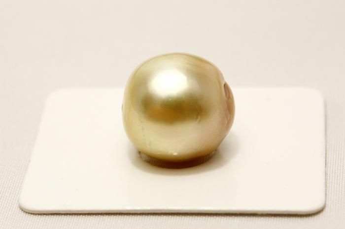 南洋白蝶真珠パールルース 両穴 14mm ナチュラルゴールドカラー