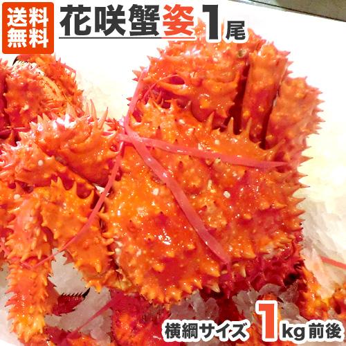 送料無料 花咲ガニ 1kg 1尾 | 花咲蟹 ハナサキガニ 花咲蟹 花咲がに 幻の蟹 幻のカニ 幻のかに カニ かに 蟹 北海道 …