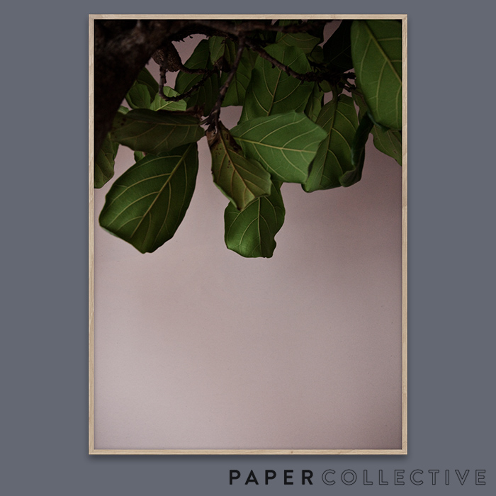 【PAPER COLLECTIVE】GREEN LEAVES/グリーンリーブス 07120 50x70cmペーパーコレクティブ/Norm Architects/ノームアーキテクツ/ポスター/葉/北欧/インテリア【コンビニ受取対応商品】