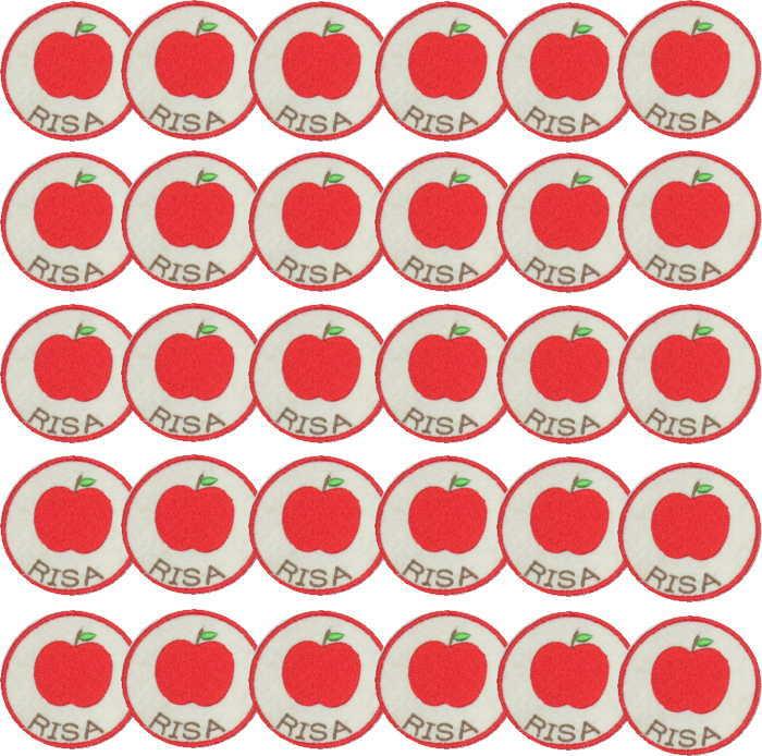 【名入れワッペンリンゴ/オフ白30枚】まとめ買い 上履き アイロン 名前 ひらがな カタカナ 漢字 名前 入り 体操着 ワッペン